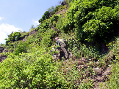 Klettersteig Calmont : Kraxeln auf dem klettersteig durch steilsten weinberg europas